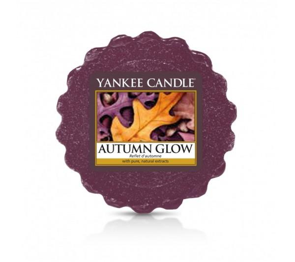 YANKEE CANDLE - wosk Autumn Glow