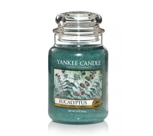 YANKEE CANDLE - Duża Świeca Eucalyptus